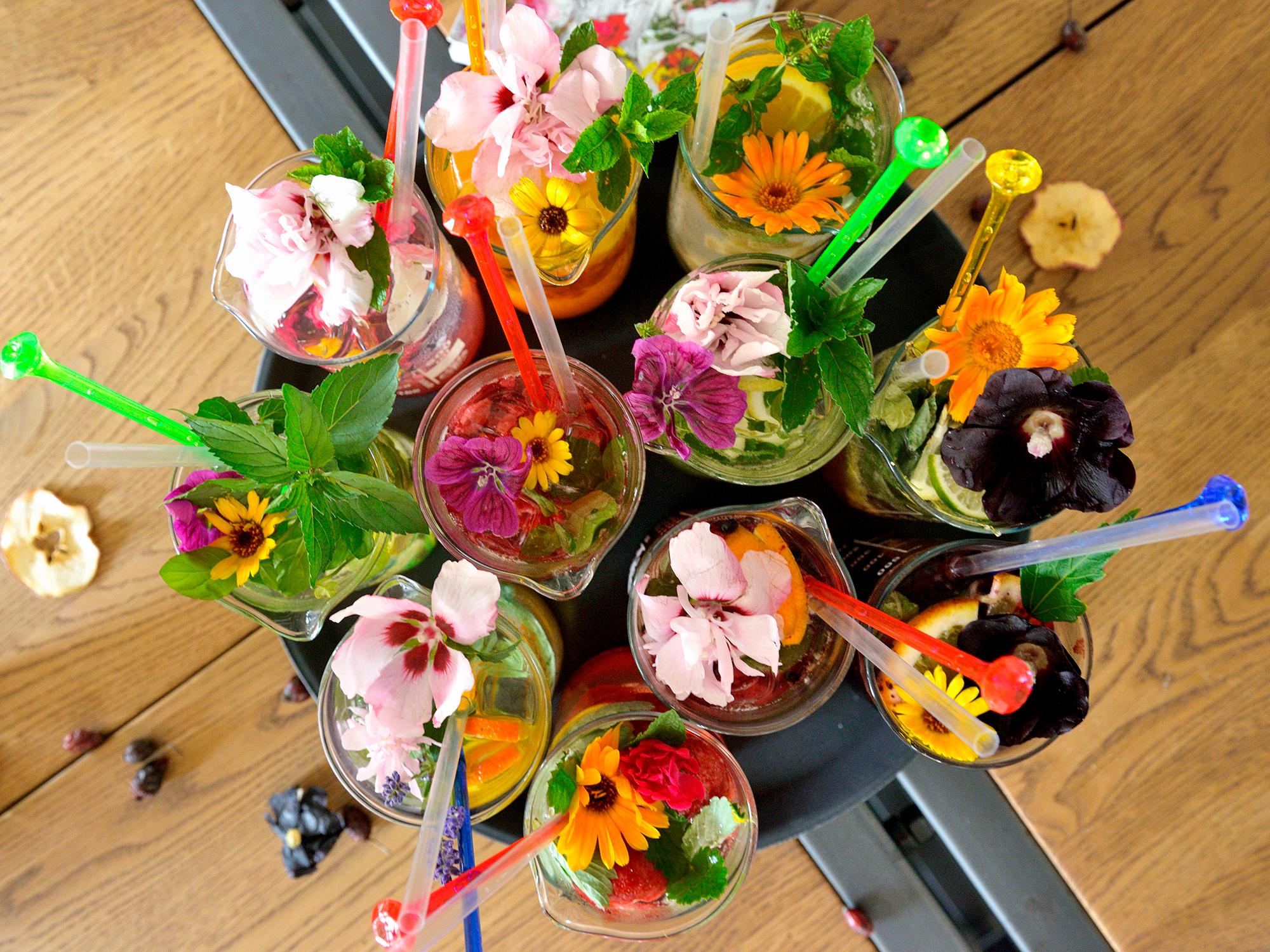 Rozkvetlý talíř aneb květy, které chutnají